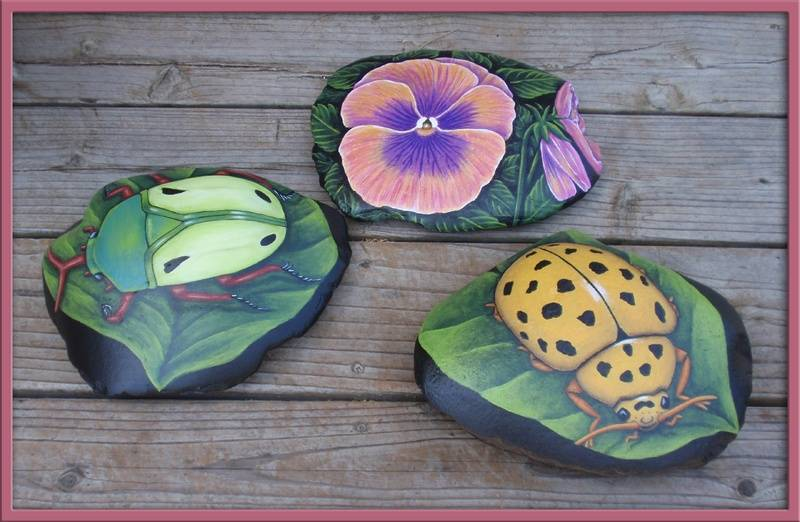 BEETLES AND PANSY