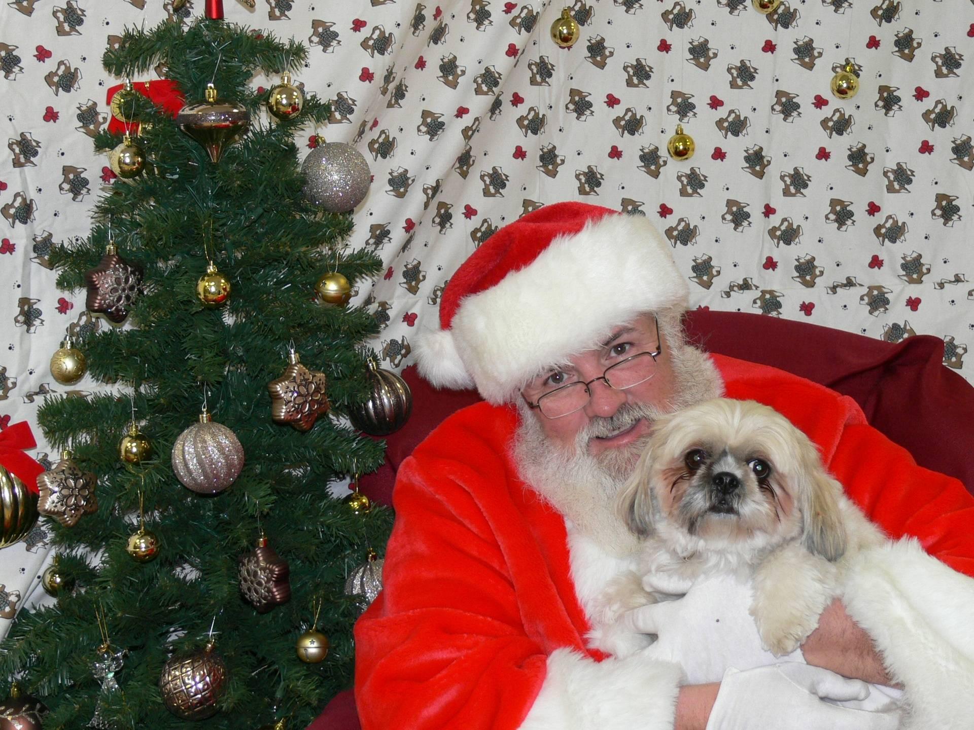 Santa and Willow
