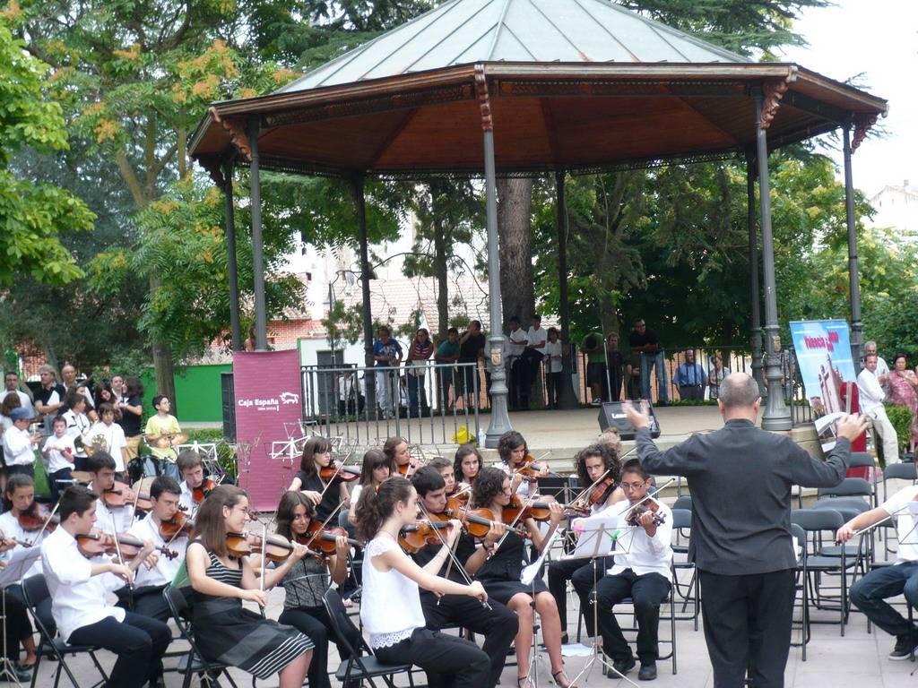 Orquesta Profesional en concierto 5
