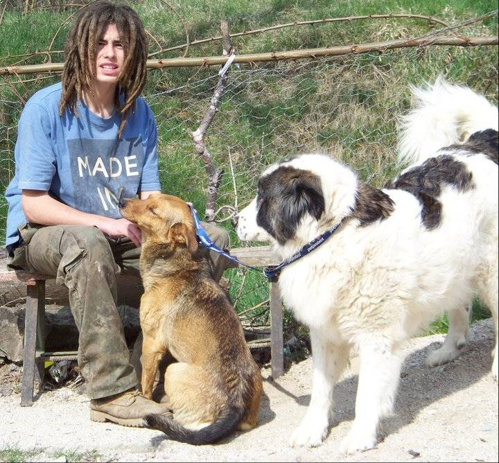 Luke with Lilly and Herc ( far right )
