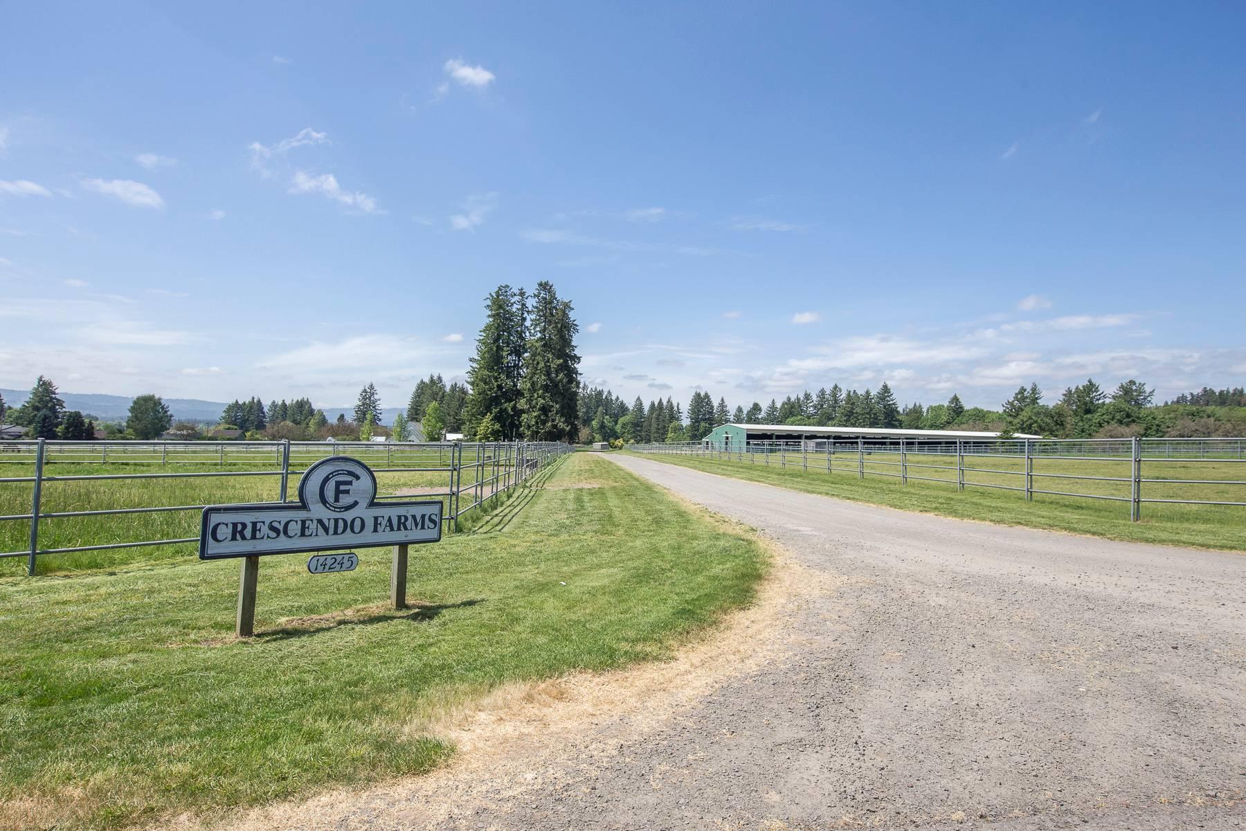 Crescendo Sign and Driveway