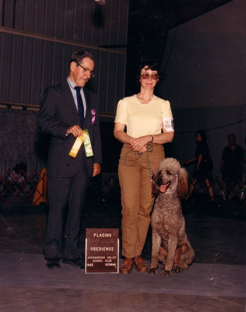 Tramp winning Novice A third place. 6/7/92.
