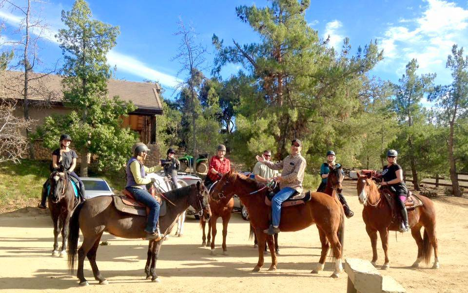 Kathleen Elliots Equestrian Ranch