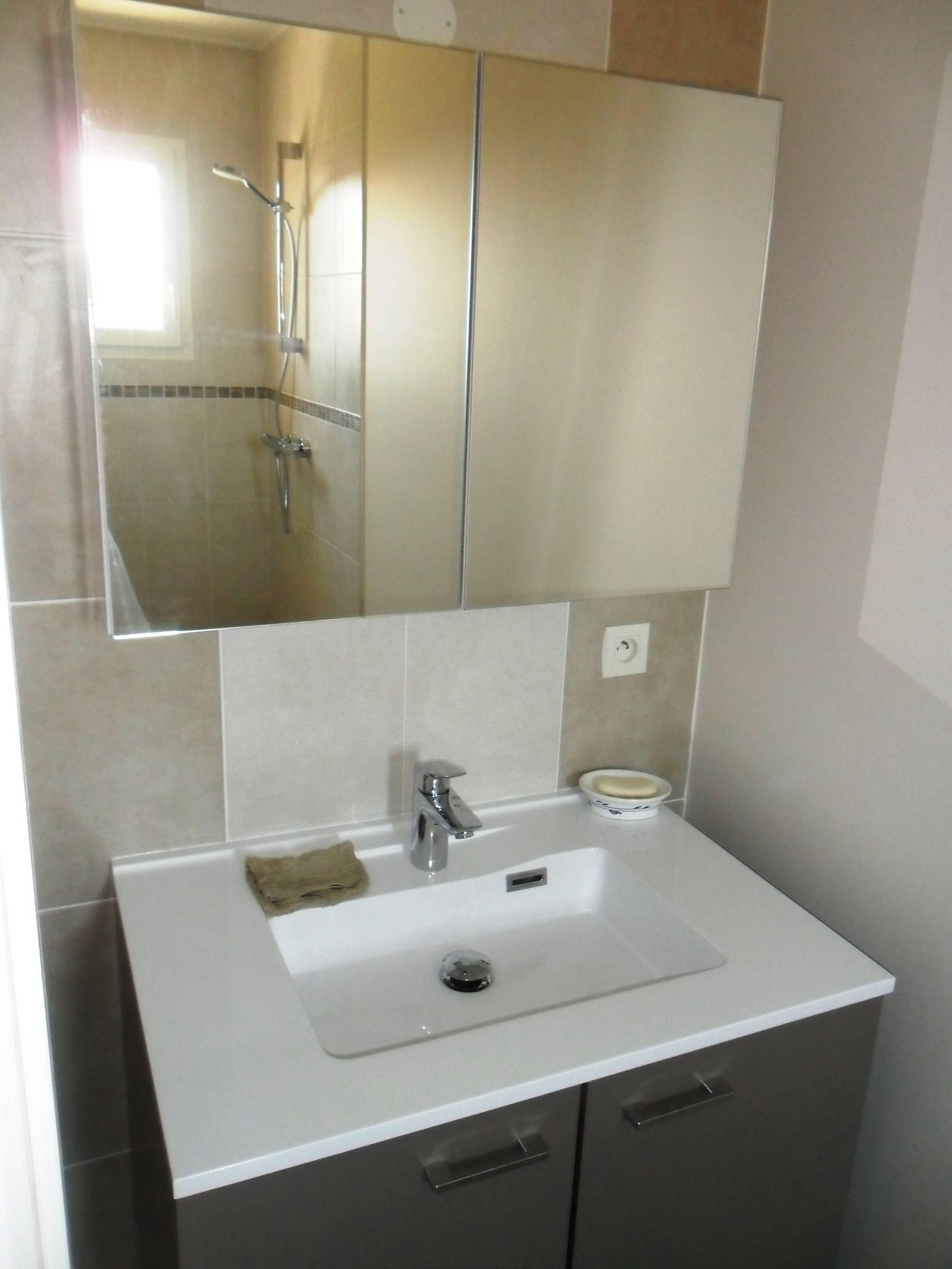 Meuble avec vasque intégré et miroir