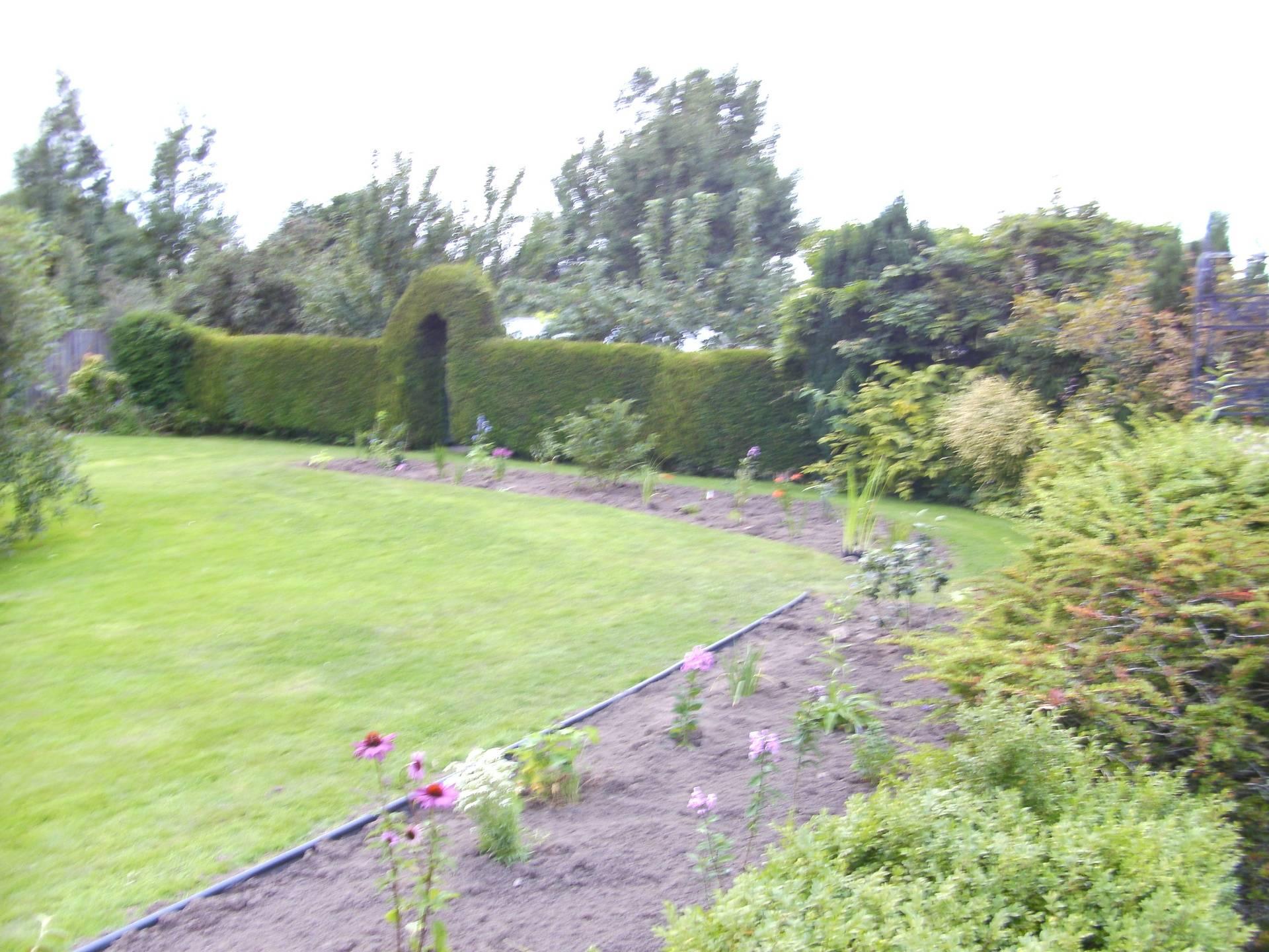 Original planting September 2013