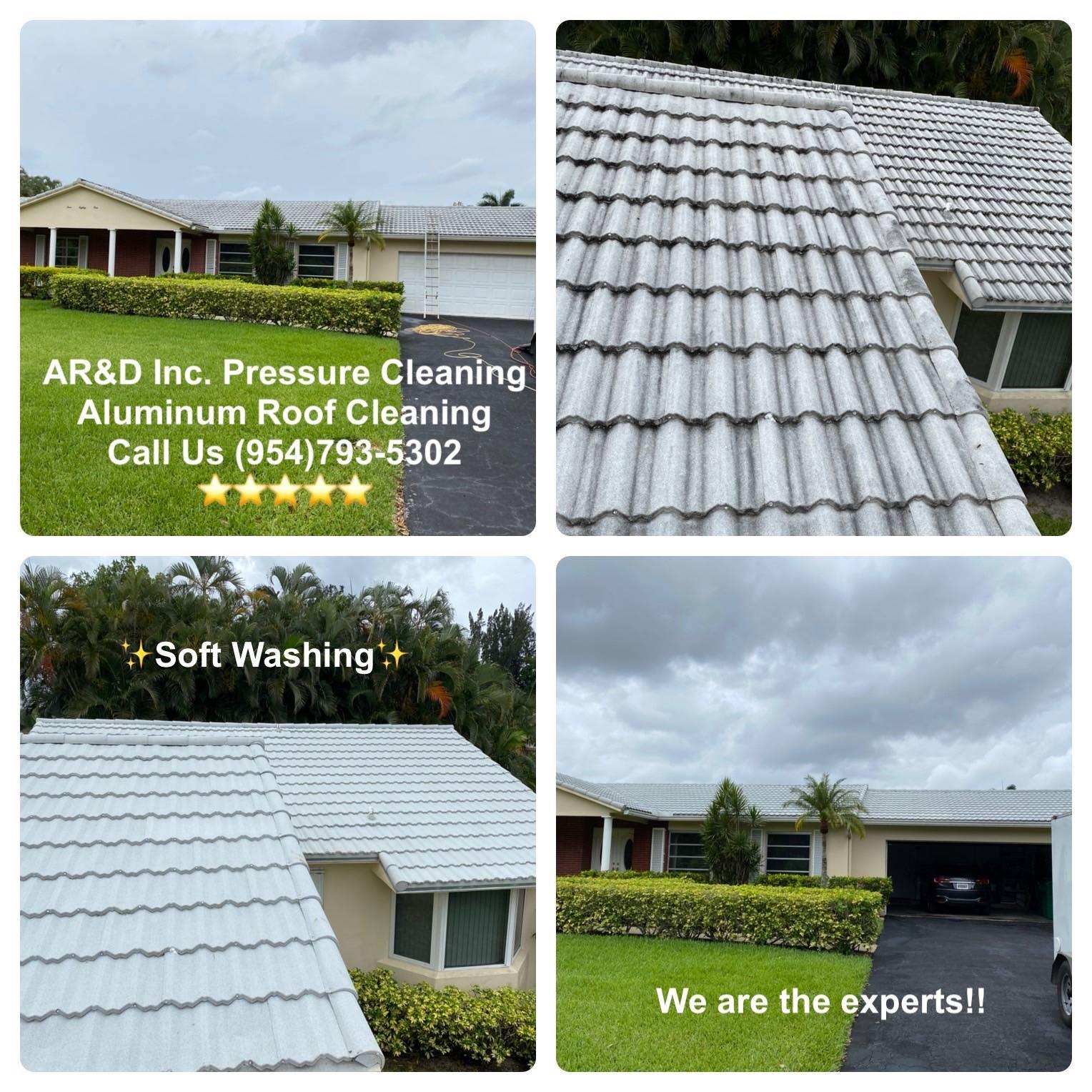 Aluminum Roof Cleaning