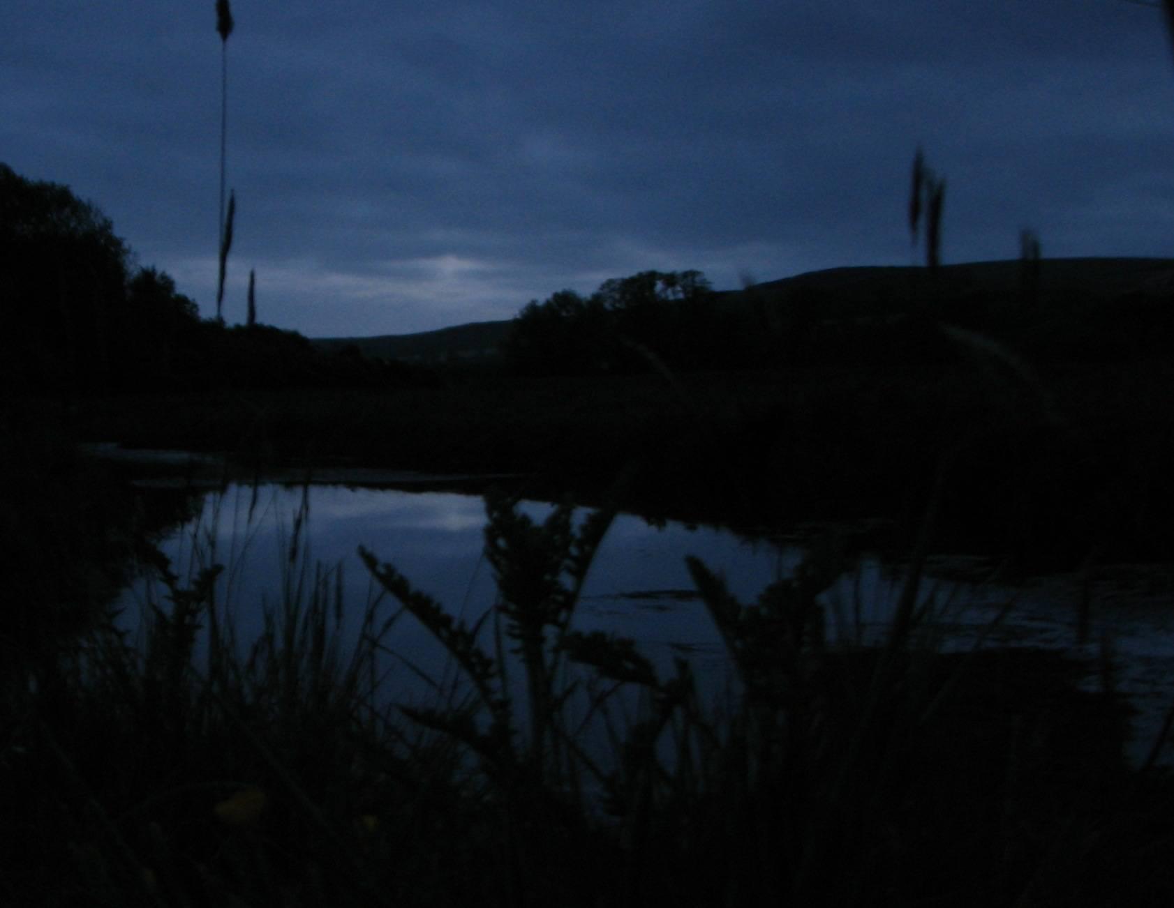 Bowmont water at dusk