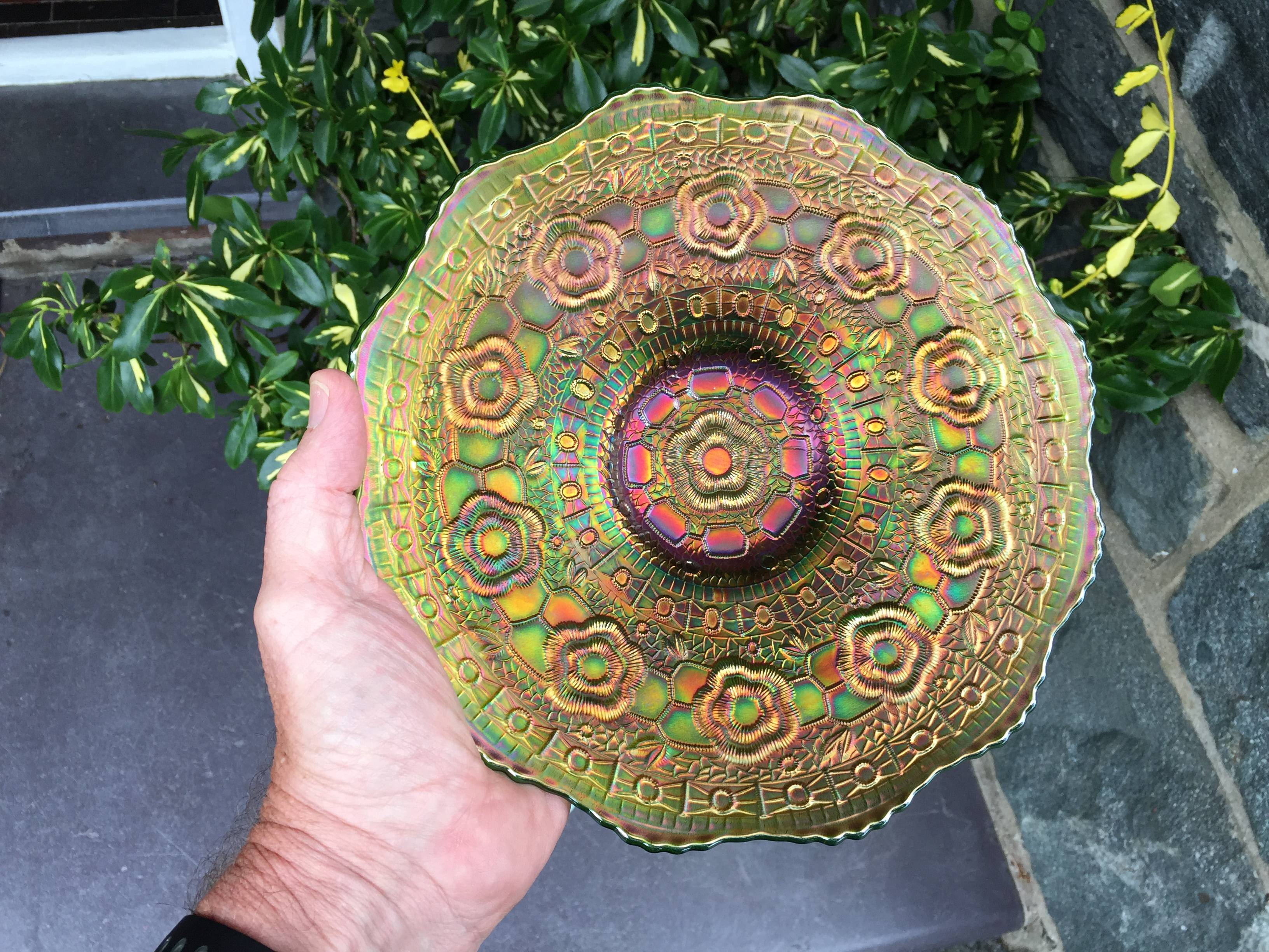 Captive Rose plate, in green