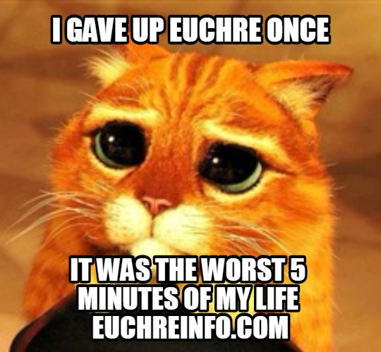I gave up Euchre once...it was the worst 5 minutes of my life.