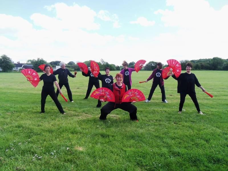 Double Fan Seminar - Surrey and Hants Tai Chi