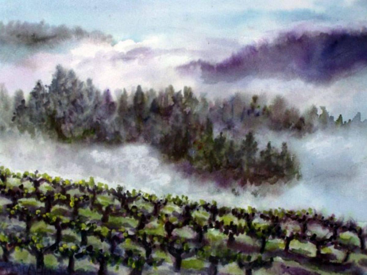 Foggy Pines & Vineyard, San Luis Obispo County