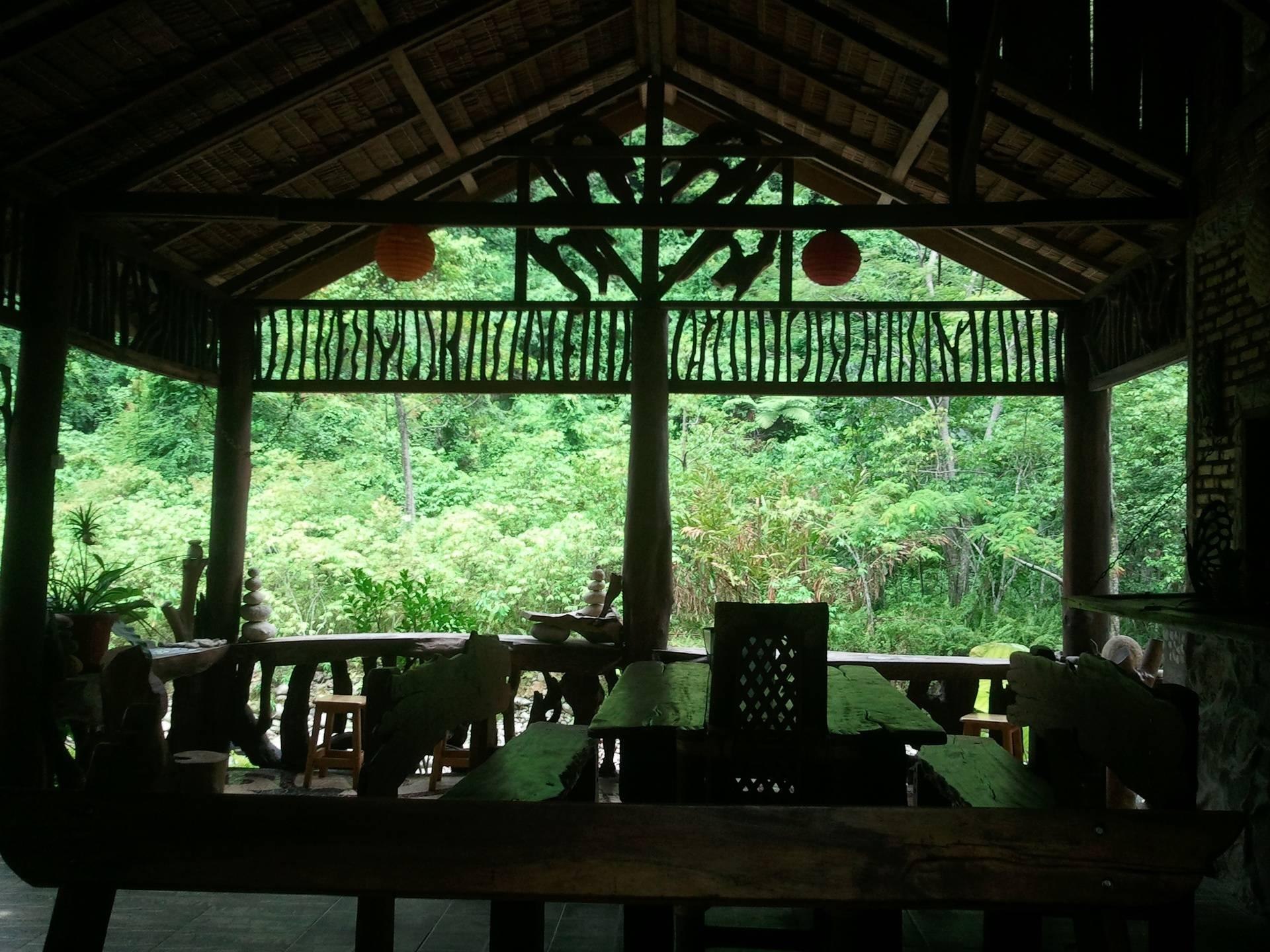 Kupu kupu Garden Cafe jungle views