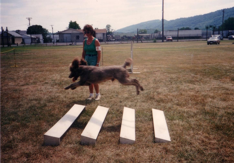 Tramp working in Open. 1993.