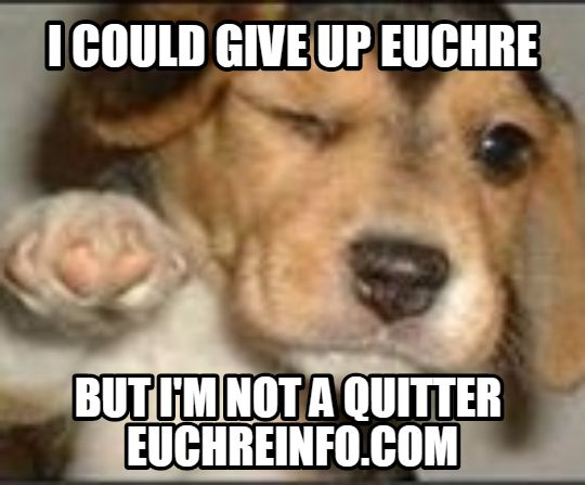 I could give up Euchre but I'm not a quitter.