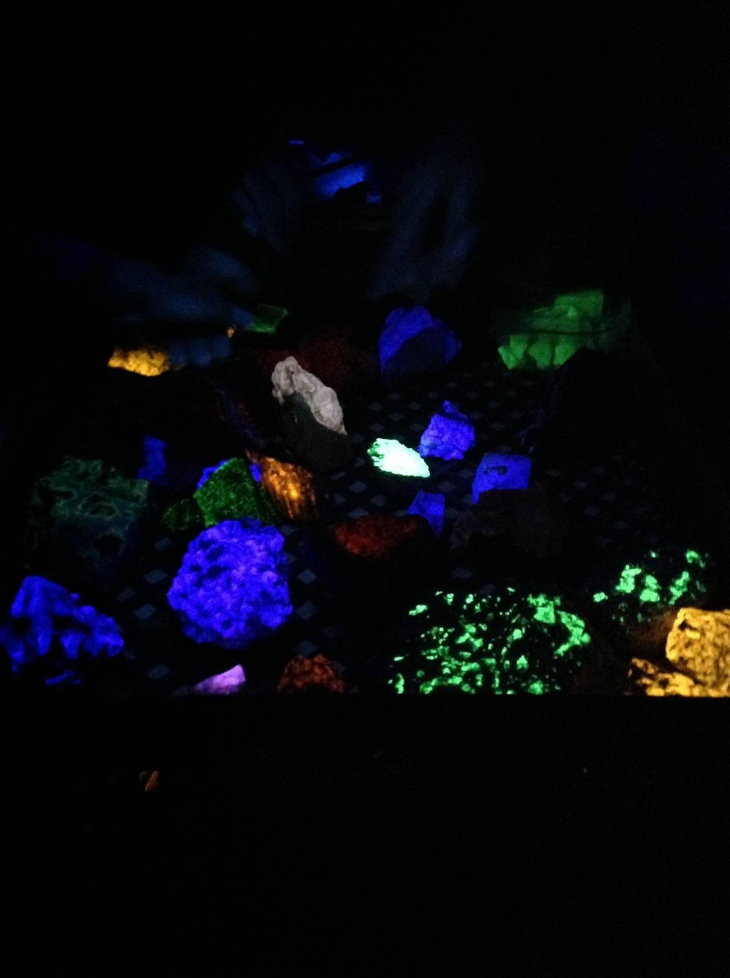 Fluorescent minerals under black light