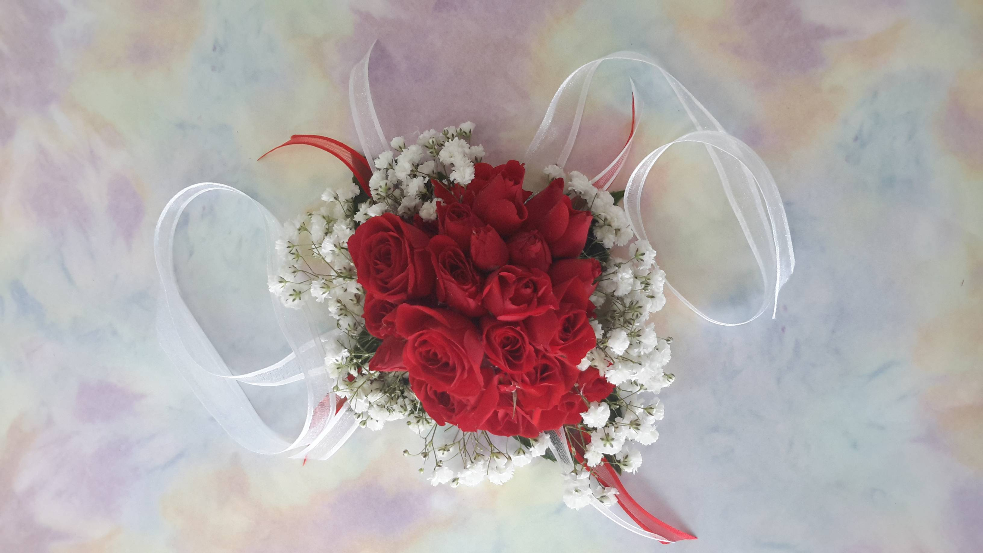 Red Roses and White Gyp