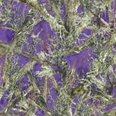 True West Purple