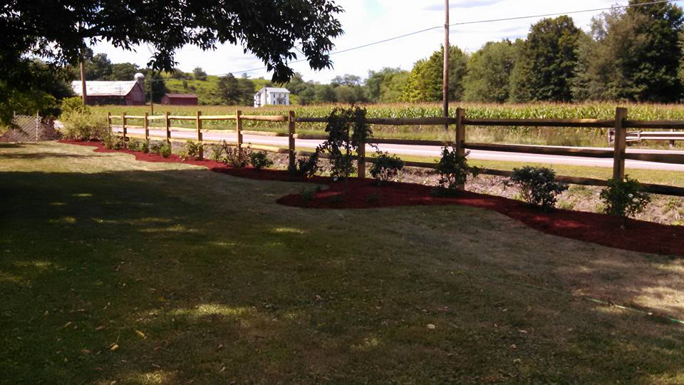 Fence, Plants, & Mulch