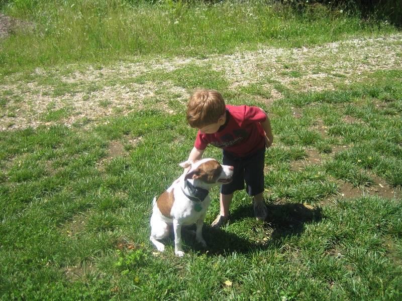 Dodge and Lola 2009
