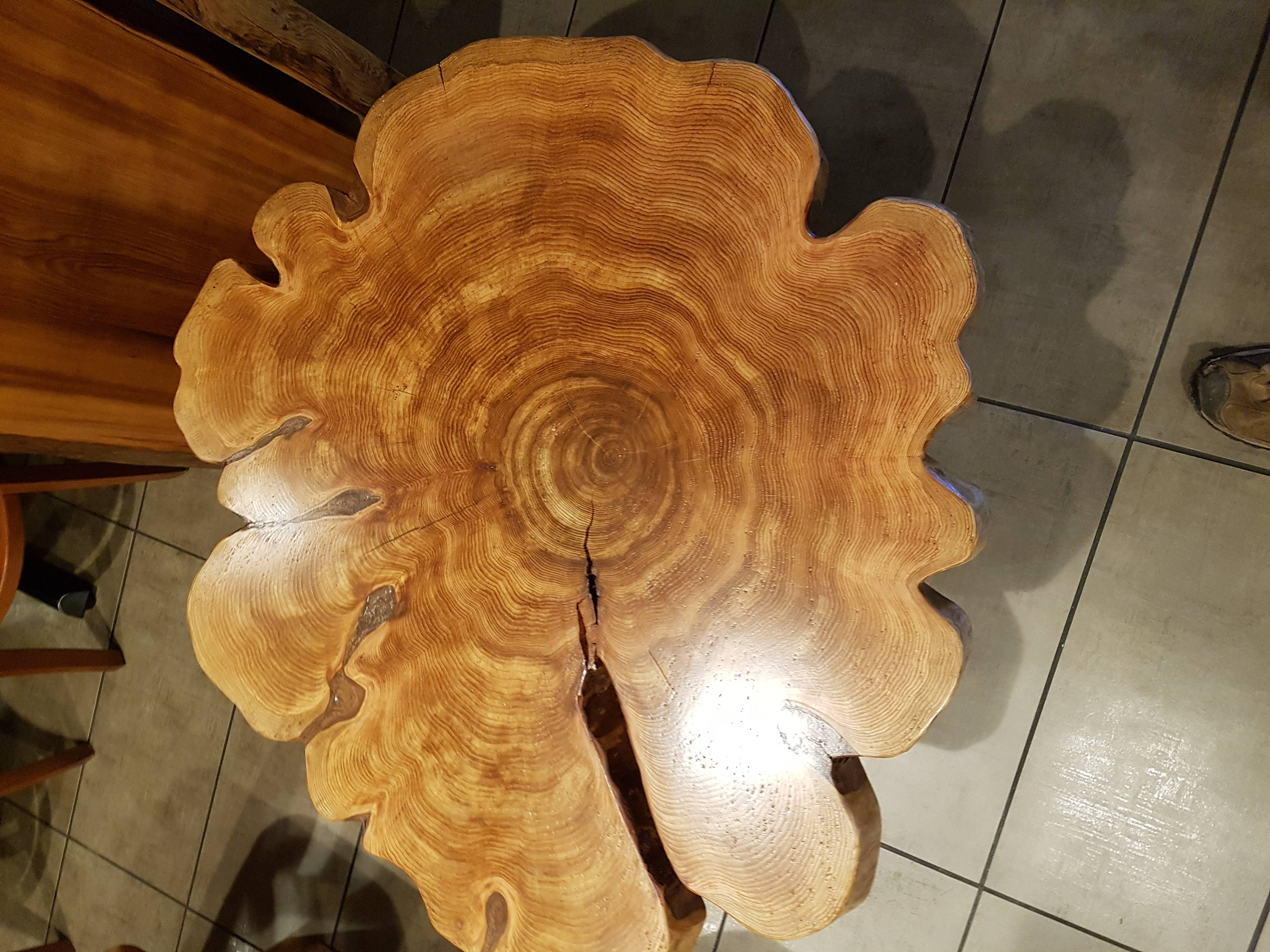 Cedar Cookie