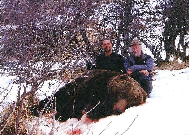 Lance Warhold's Bear