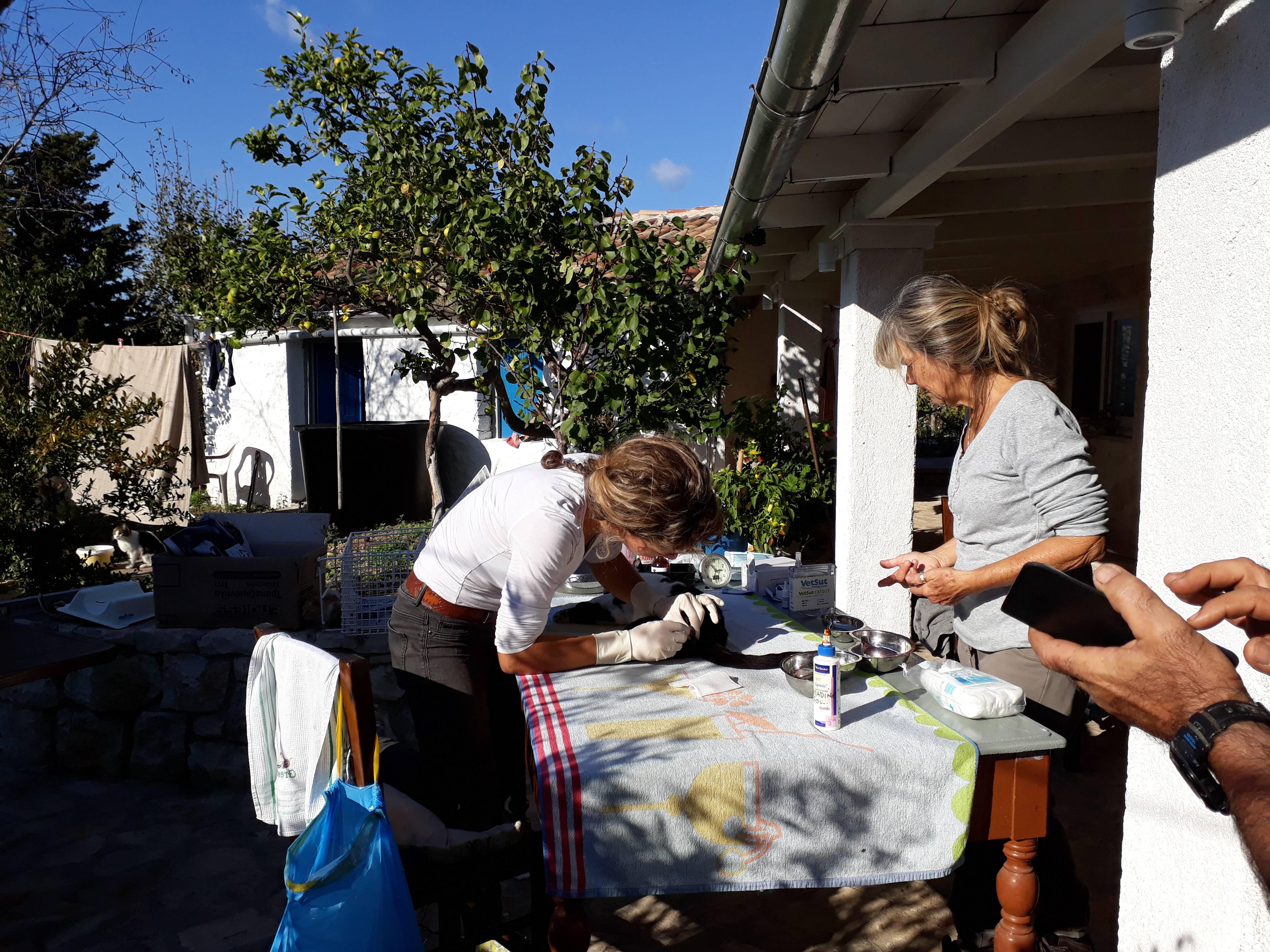 Nefeli & Anna hard at work