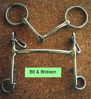 Bit & Bridoon