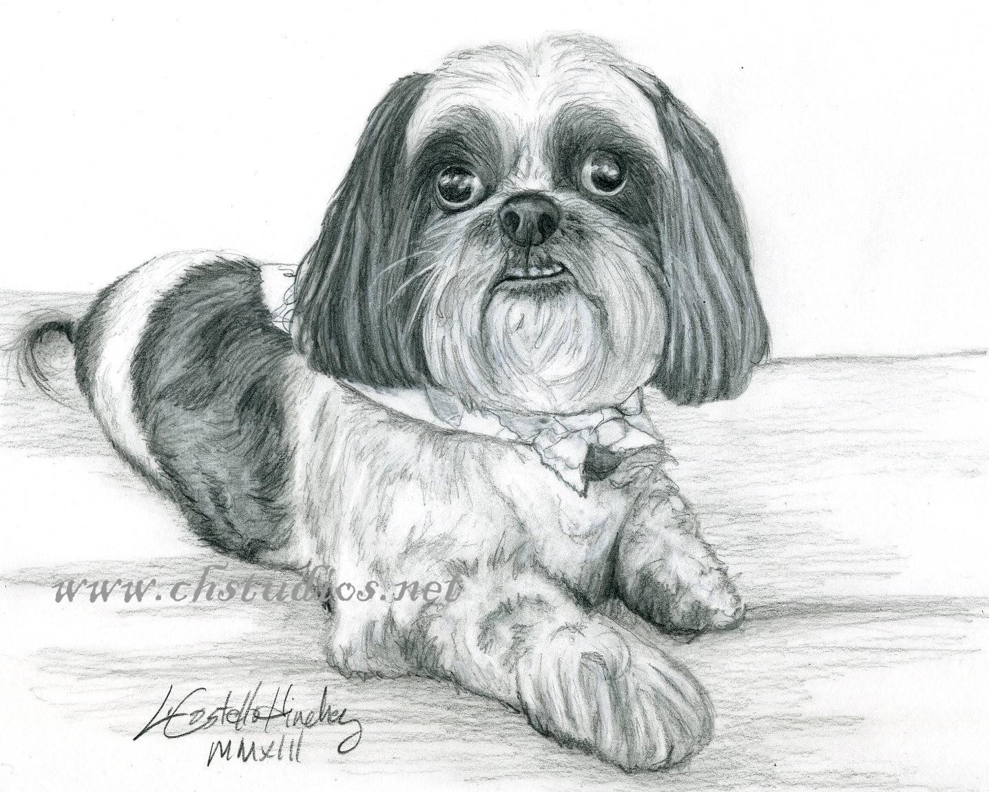 Rascal Pet Portrait Commission