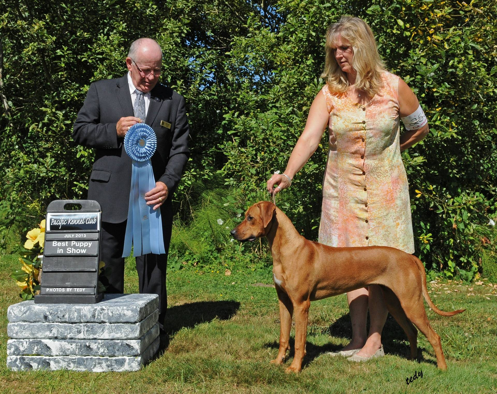 Askher first show--Best Puppy In Show