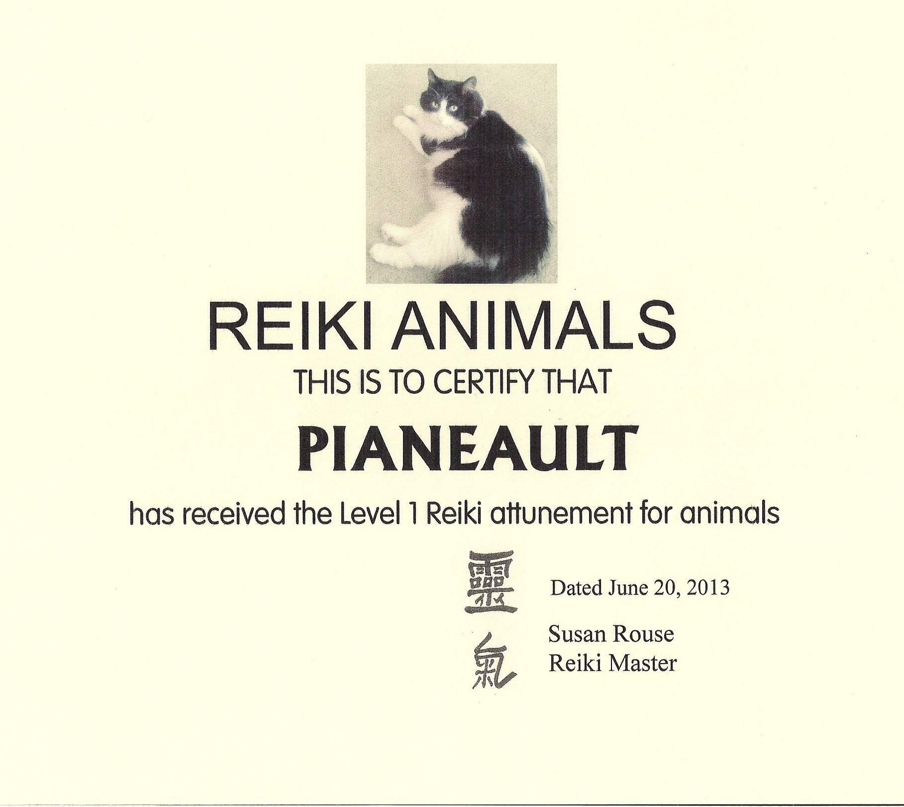 Pianeault the Reiki Cat