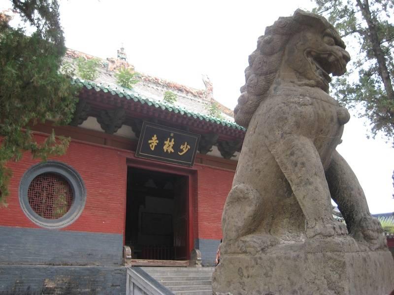 tigre o leon?