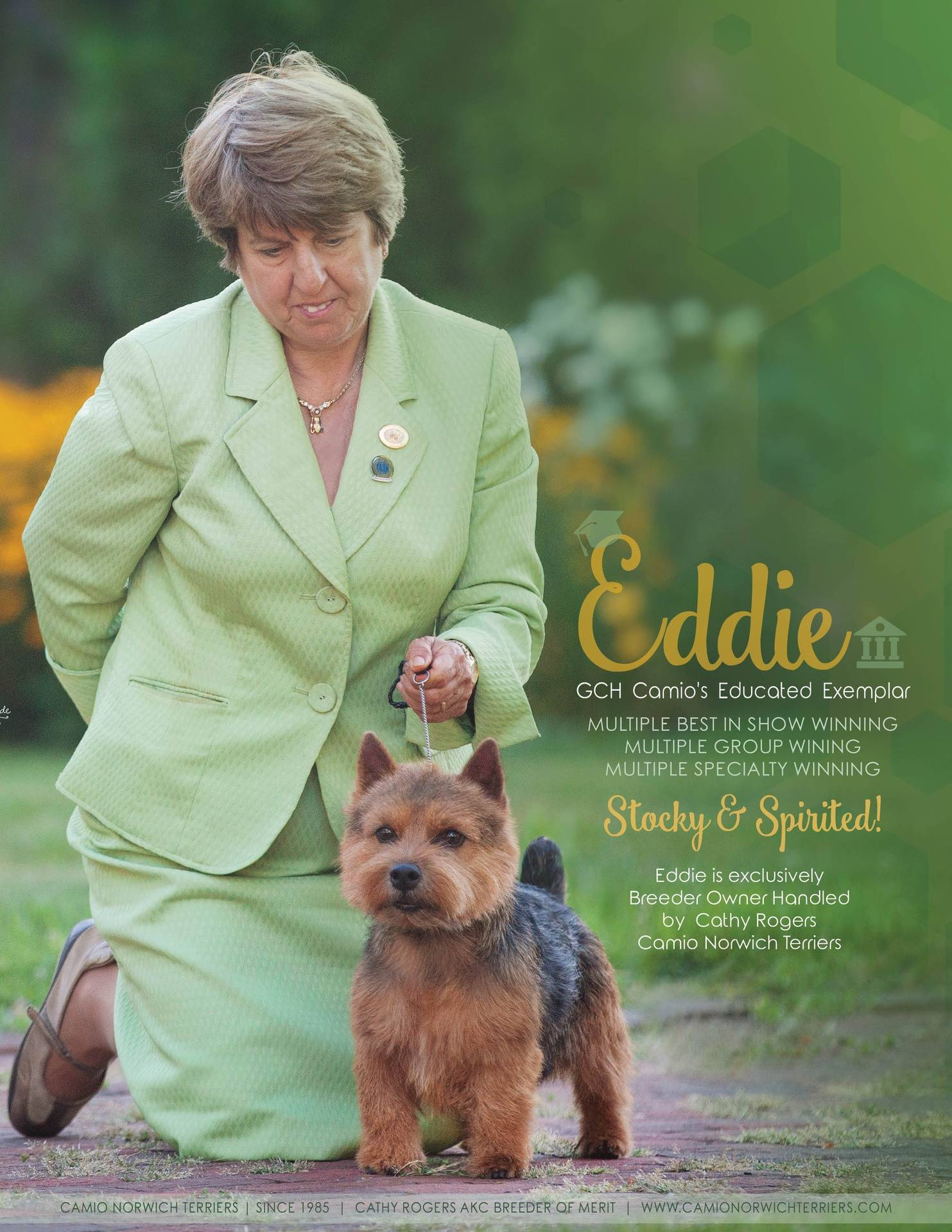 Canine Chronicle Ad
