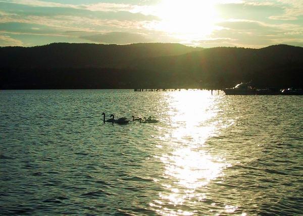 Sundown on the Drammen fjord