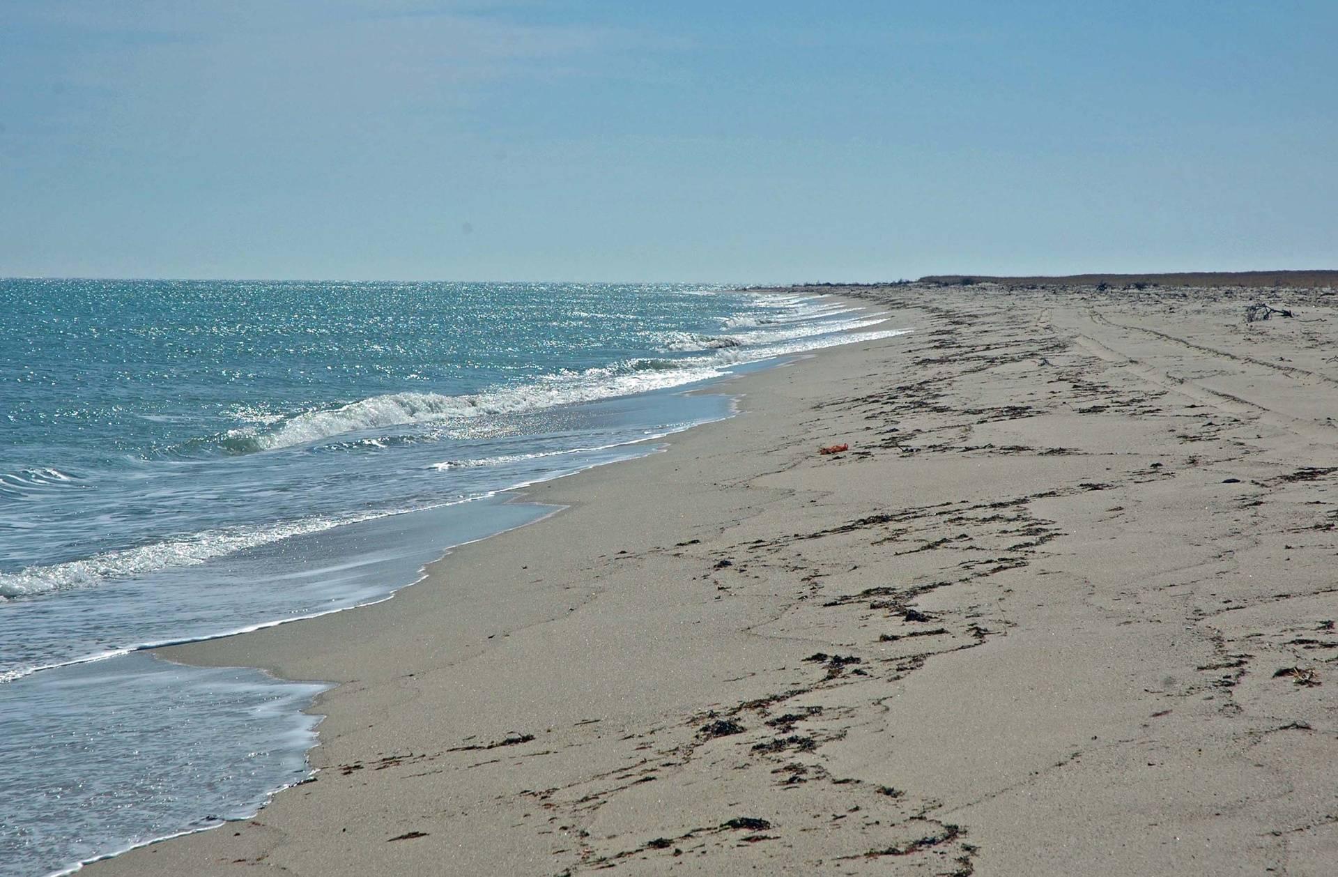 Walking along East Beach, Chappy
