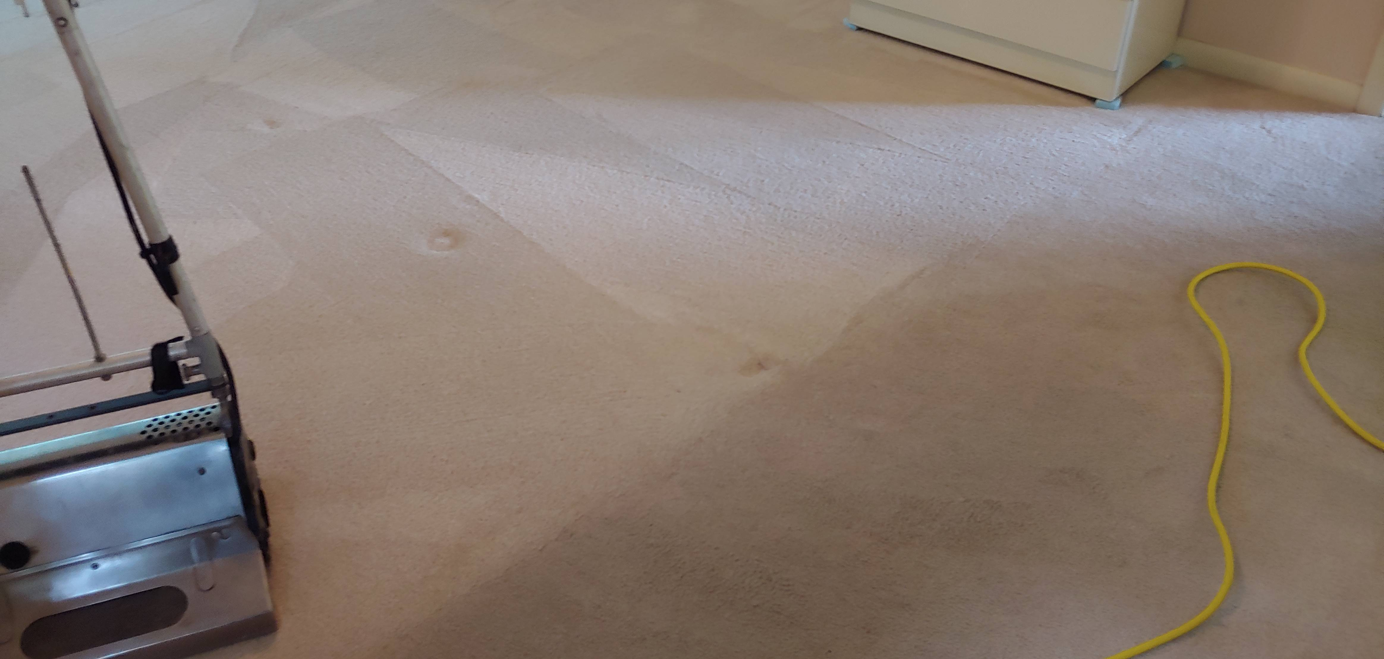 Low moisture cleaning home