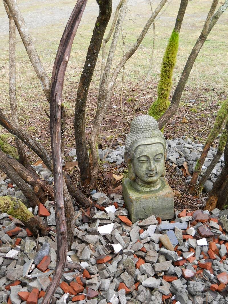 Buddha One before the Fence