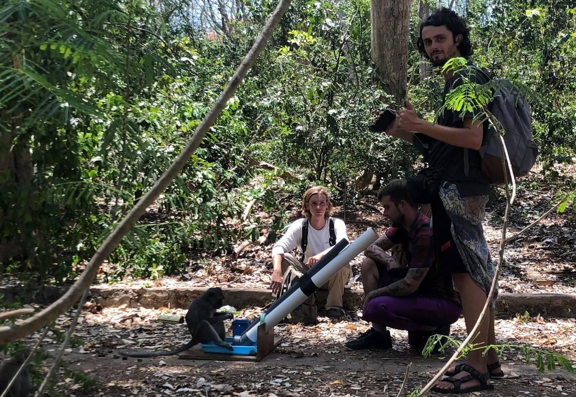 Caleb Bunselmeyer, Matthew Gardiner and Christian Dunn experimentally inducing bartering in a long-tailed macaque (Uluwatu, Bali, Nov. 2019)