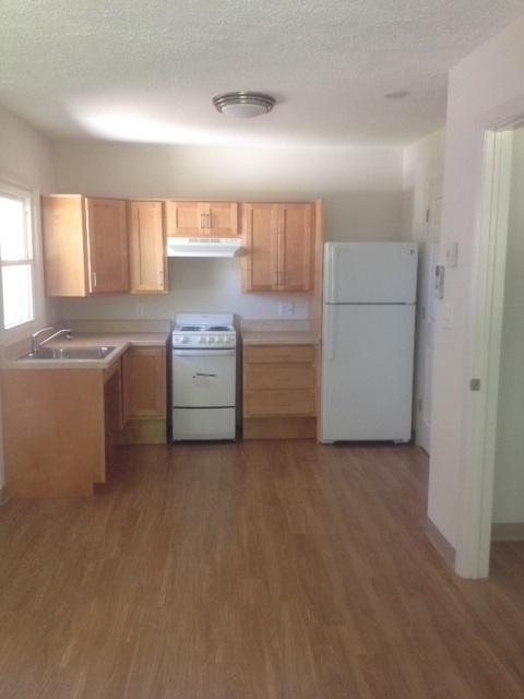 1 Bedroom ADA Kitchen