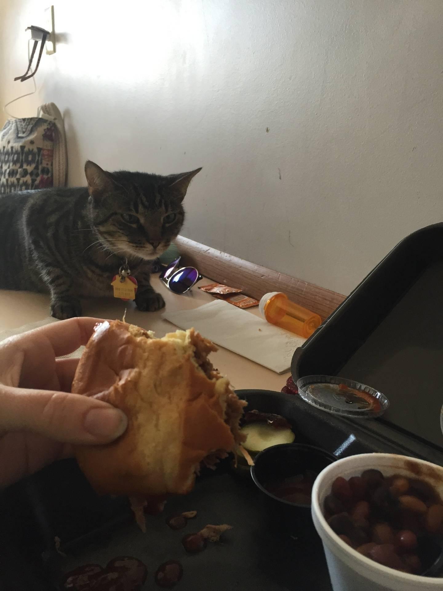 Happy a.k.a. Food Thief
