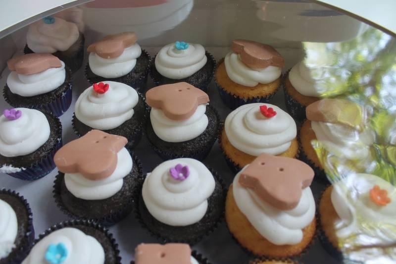 2014 Haas Chihuahua Reunion Cupcakes