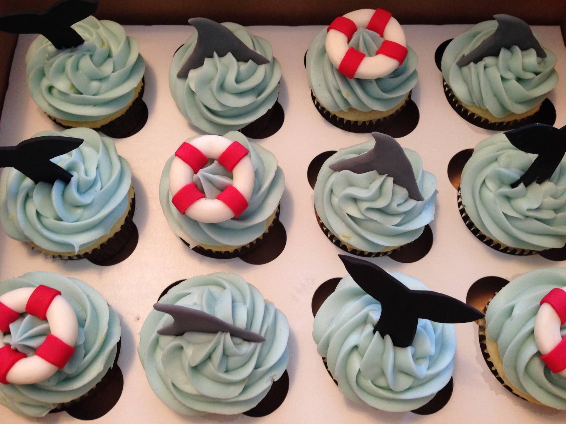 Sharks & Whale Tails