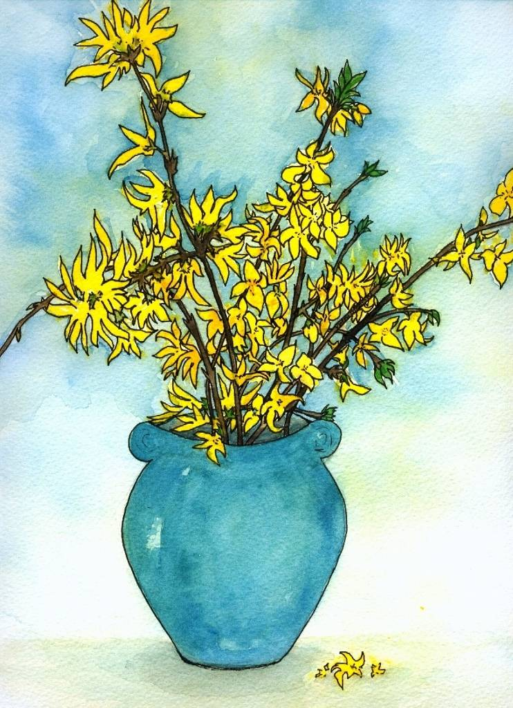 Winter Forsythia