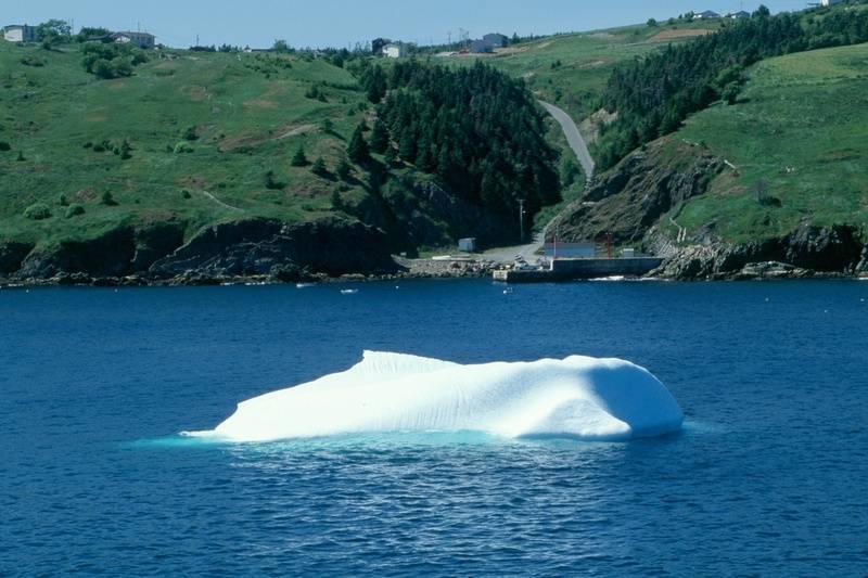 Small iceberg in Torbay Harbour