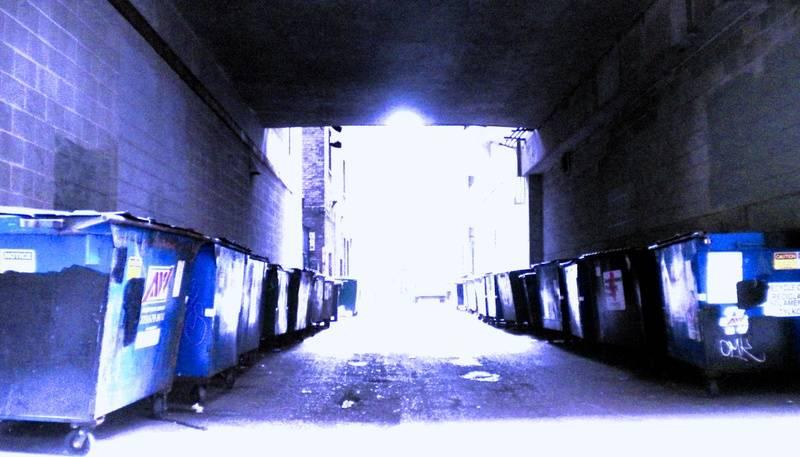 Blue Dumpsters