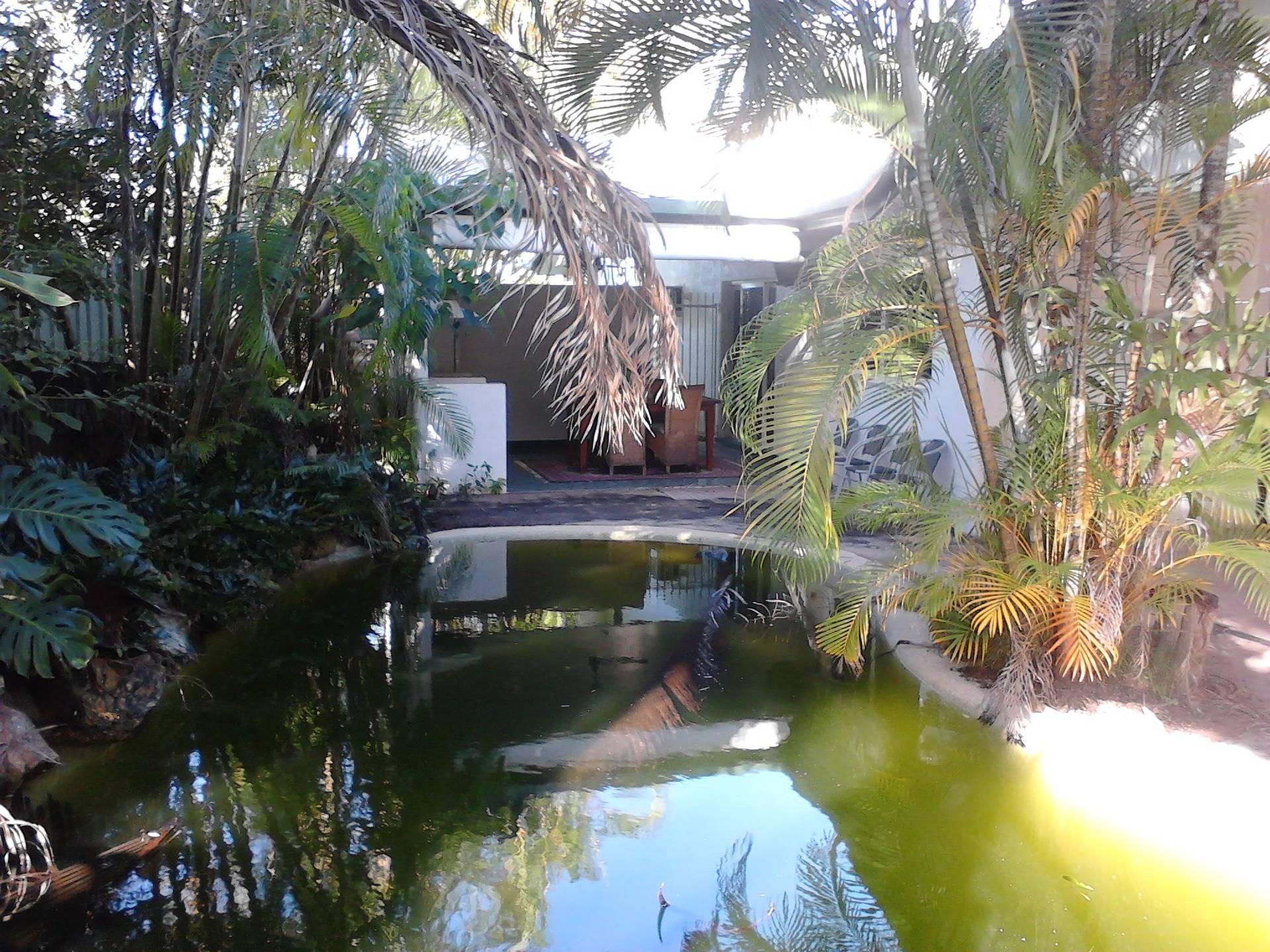 Back Pool Aera Before