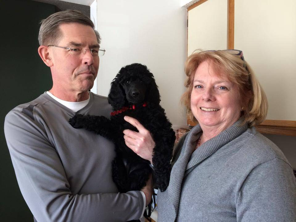 Red leaving with her new family.  8 weeks.