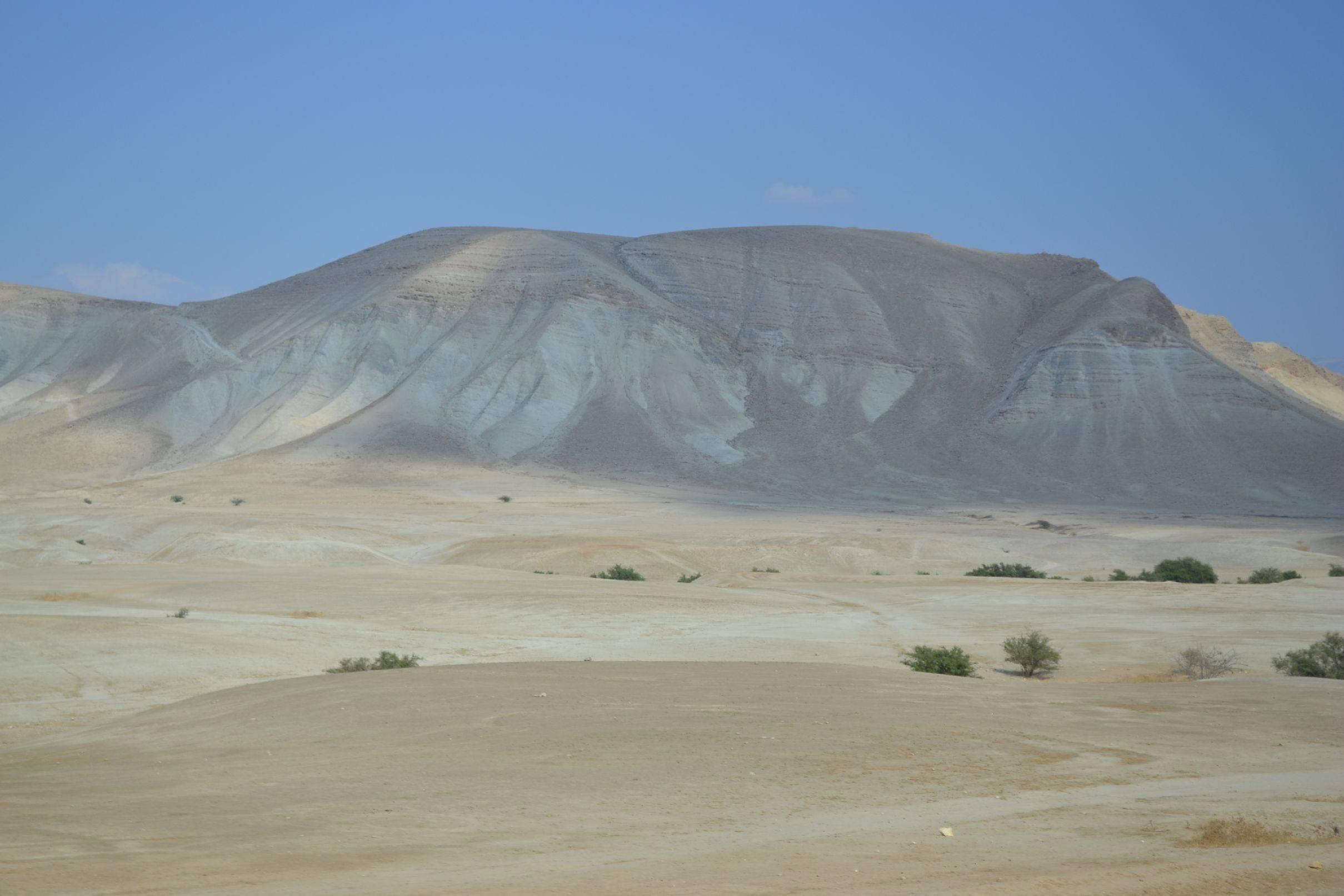 Dusty Hills