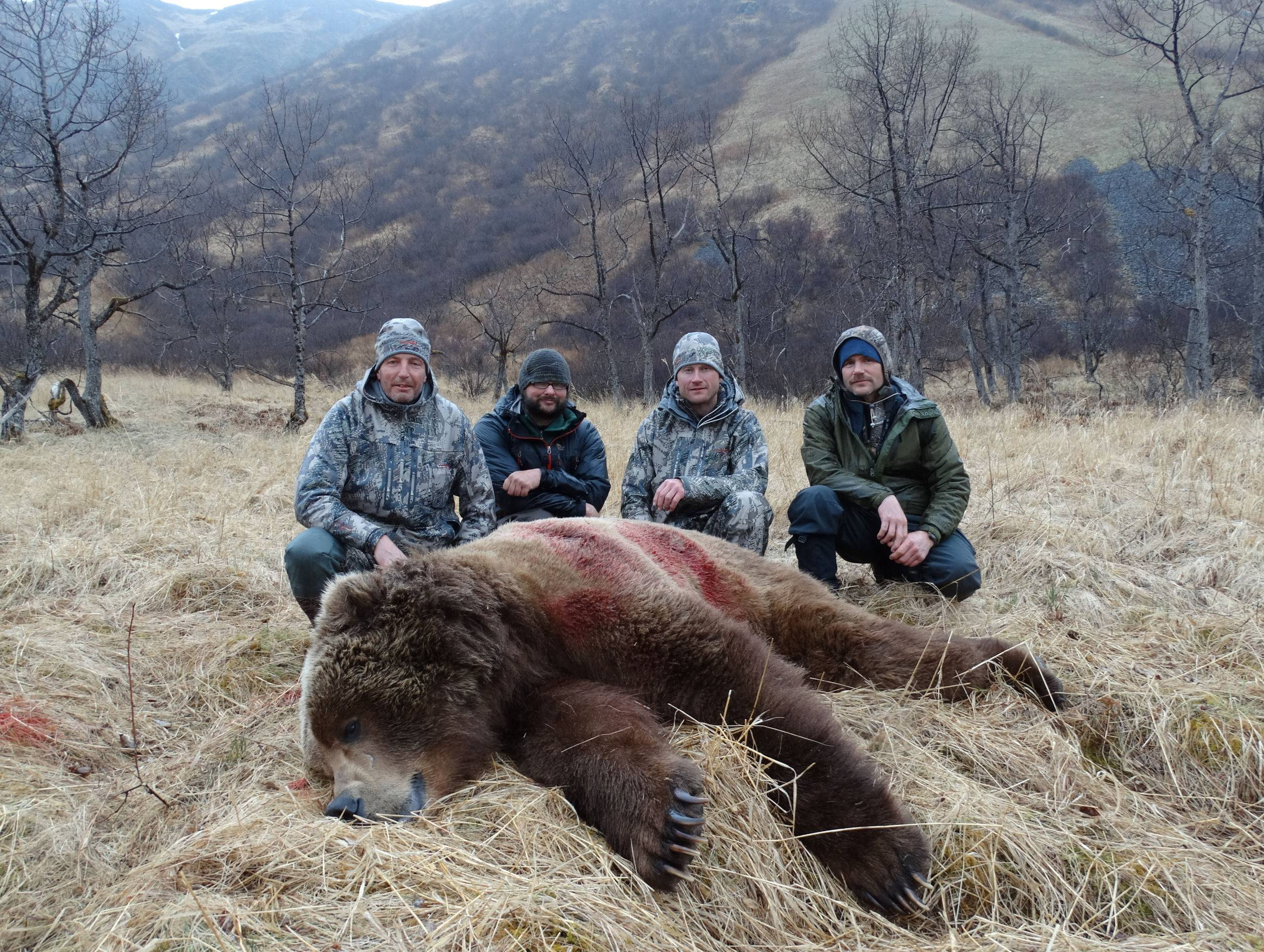 Rune Nyas May Brown Bear