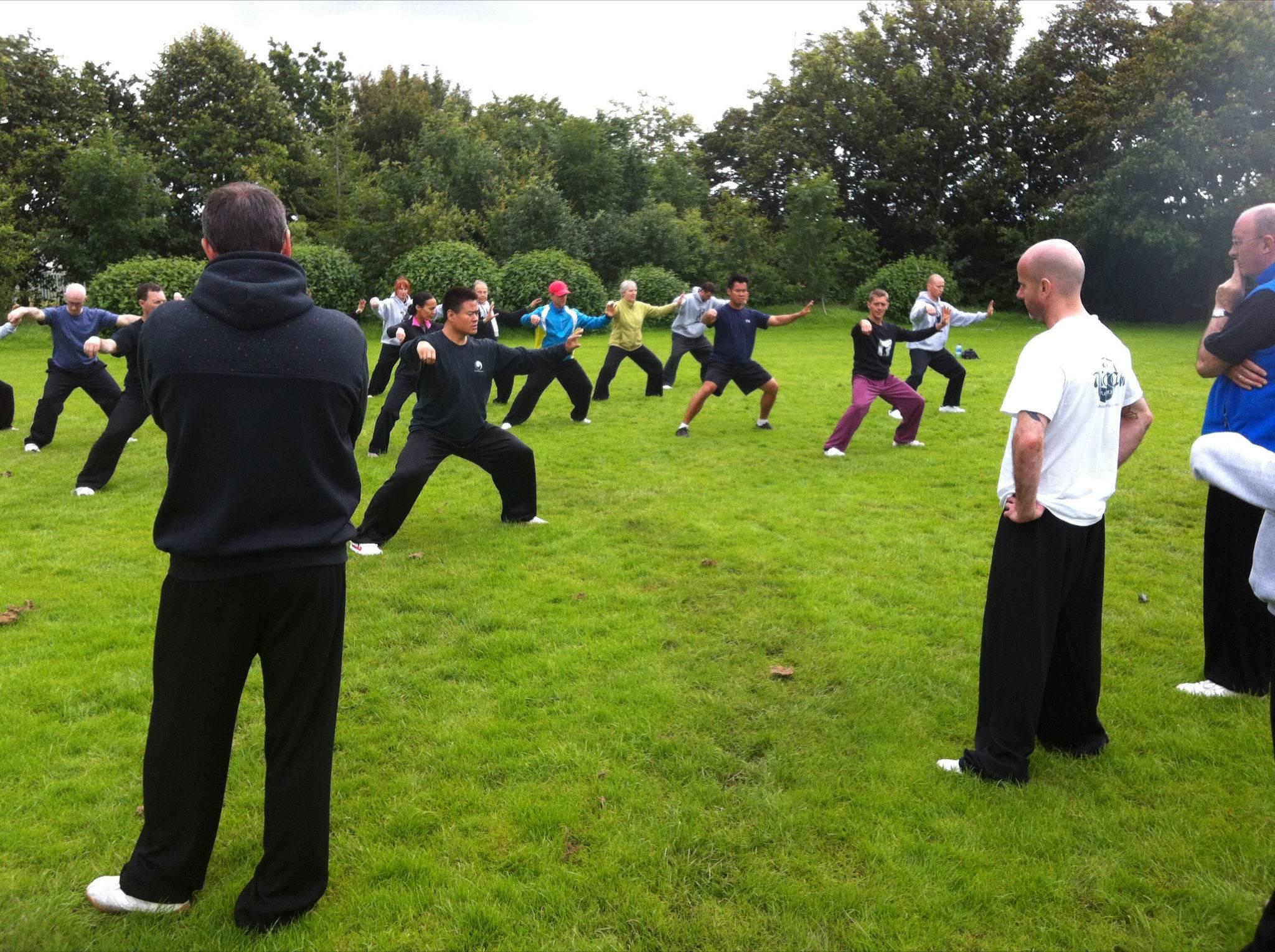 Laojia Yi Lu Training in Ireland 2014