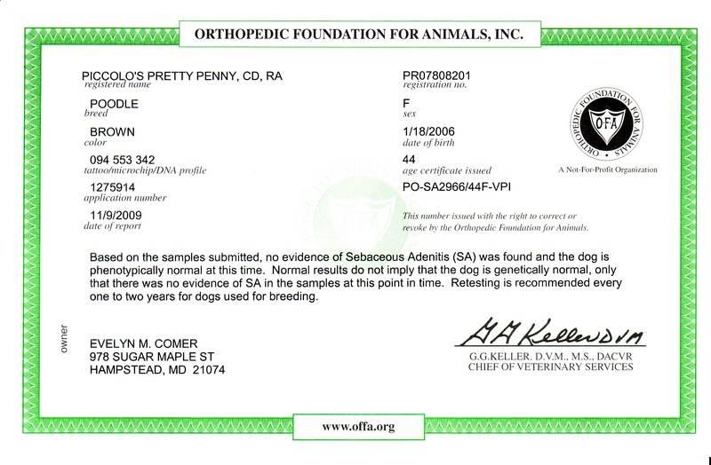Penny OFA Sebaceous Adenitis